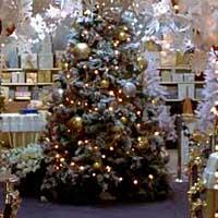Где поставить новогоднюю елку по Фен-шуй