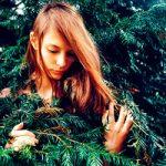 Какое я дерево
