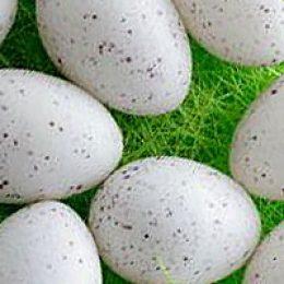 Толкование снов с яйцами