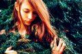 Миниатюра к статье Тайны гороскопа друидов: какое я дерево?